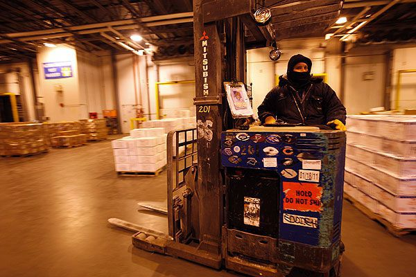 man on forklift wearing a cold suit loading a refrigerated truck trailer