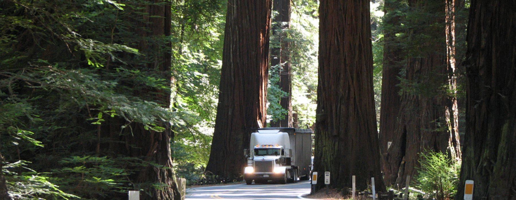 Green Trucking Companies